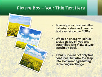 0000062576 PowerPoint Templates - Slide 17