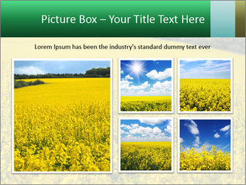 0000062576 PowerPoint Templates - Slide 19