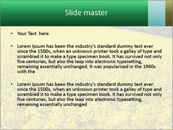 0000062576 PowerPoint Template - Slide 2