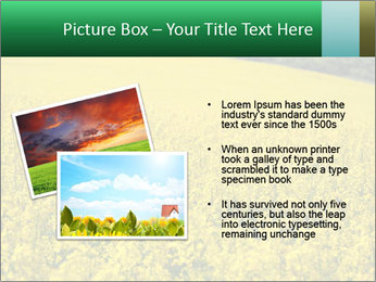 0000062576 PowerPoint Templates - Slide 20