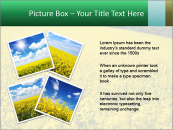 0000062576 PowerPoint Templates - Slide 23