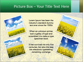 0000062576 PowerPoint Templates - Slide 24