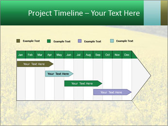 0000062576 PowerPoint Template - Slide 25
