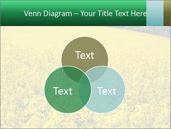 0000062576 PowerPoint Template - Slide 33