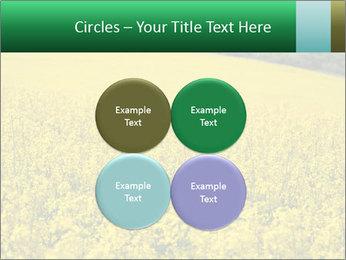 0000062576 PowerPoint Template - Slide 38