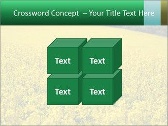 0000062576 PowerPoint Template - Slide 39