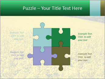 0000062576 PowerPoint Templates - Slide 43