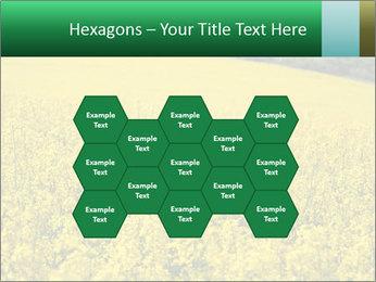 0000062576 PowerPoint Template - Slide 44