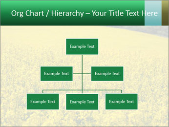 0000062576 PowerPoint Template - Slide 66