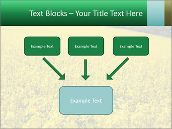 0000062576 PowerPoint Template - Slide 70