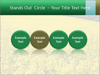 0000062576 PowerPoint Template - Slide 76