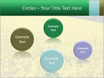 0000062576 PowerPoint Templates - Slide 77