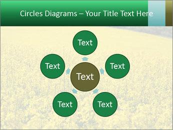 0000062576 PowerPoint Template - Slide 78