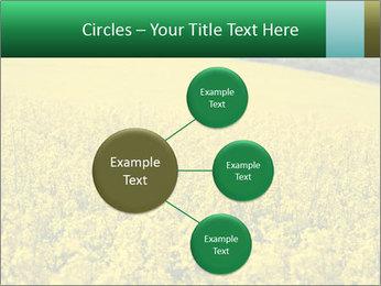 0000062576 PowerPoint Template - Slide 79