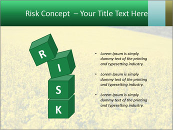 0000062576 PowerPoint Template - Slide 81