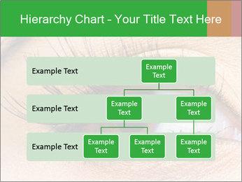 0000062586 PowerPoint Template - Slide 67