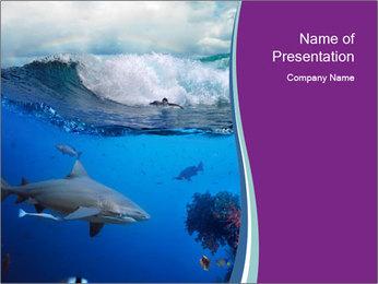 0000062593 PowerPoint Template - Slide 1