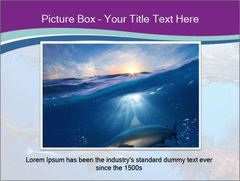 0000062593 PowerPoint Template - Slide 16