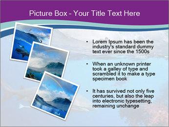 0000062593 PowerPoint Template - Slide 17