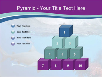 0000062593 PowerPoint Template - Slide 31