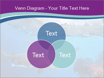 0000062593 PowerPoint Template - Slide 33