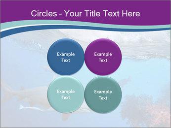 0000062593 PowerPoint Template - Slide 38