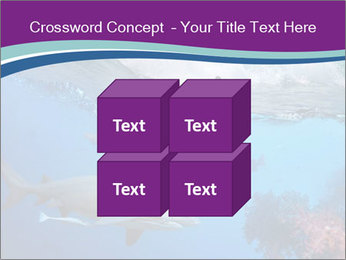 0000062593 PowerPoint Template - Slide 39