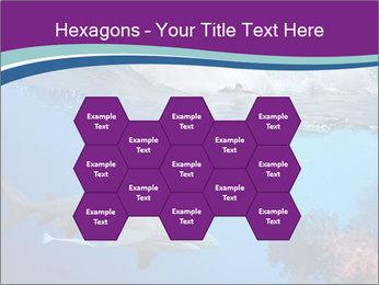 0000062593 PowerPoint Template - Slide 44