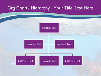 0000062593 PowerPoint Template - Slide 66