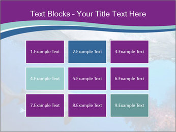 0000062593 PowerPoint Template - Slide 68