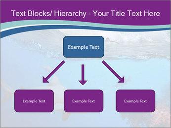 0000062593 PowerPoint Template - Slide 69