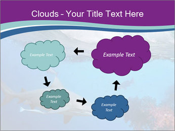 0000062593 PowerPoint Template - Slide 72