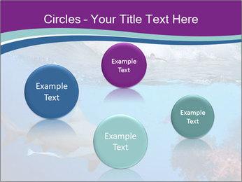 0000062593 PowerPoint Template - Slide 77