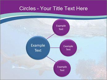 0000062593 PowerPoint Template - Slide 79