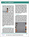 0000062595 Word Templates - Page 3