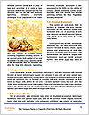 0000062600 Word Templates - Page 4
