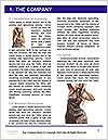 0000062602 Word Templates - Page 3