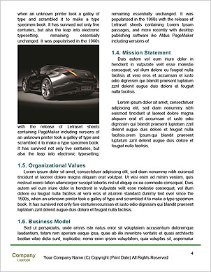 0000062610 Word Template - Page 4
