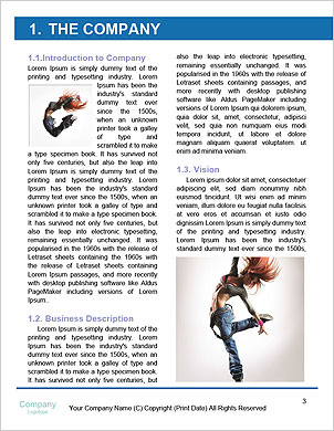 0000062613 Word Template - Page 3
