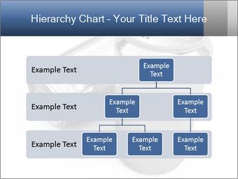 0000062621 PowerPoint Templates - Slide 67