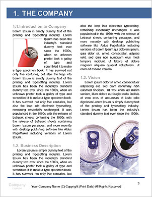 0000062621 Word Template - Page 3