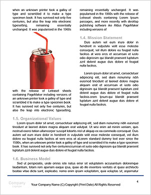 0000062621 Word Template - Page 4
