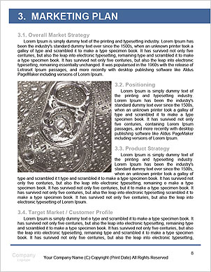 0000062621 Word Template - Page 8