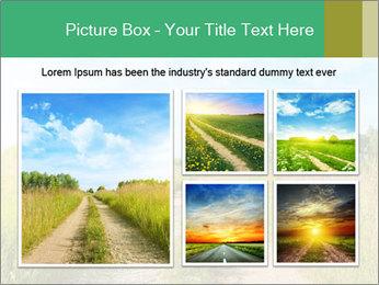 0000062642 PowerPoint Template - Slide 19