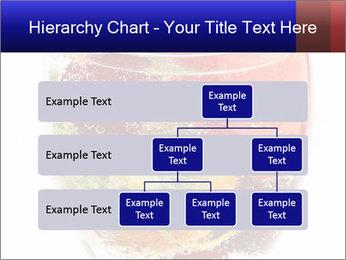0000062643 PowerPoint Templates - Slide 67