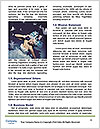 0000062649 Word Templates - Page 4