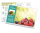 0000062662 Postcard Templates
