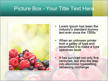0000062662 PowerPoint Template - Slide 13