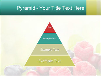 0000062662 PowerPoint Templates - Slide 30