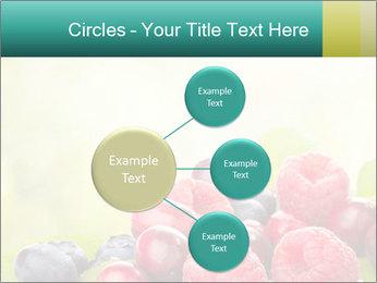 0000062662 PowerPoint Templates - Slide 79